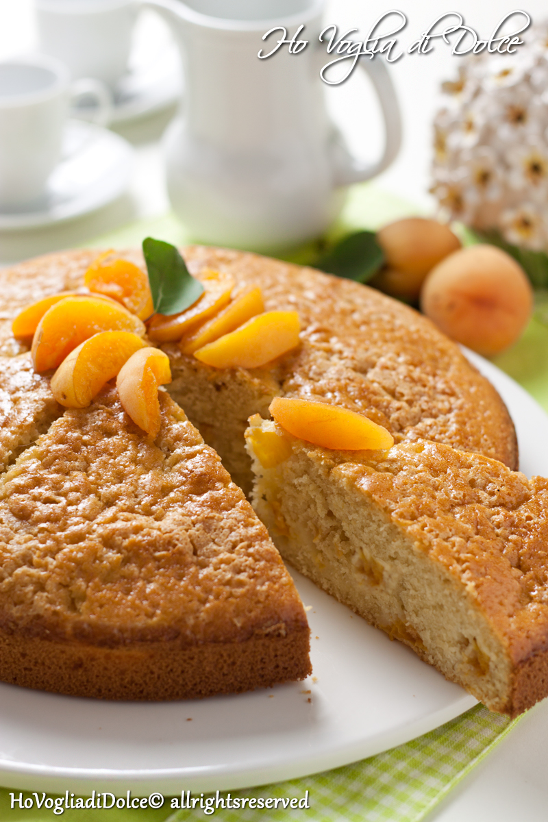 Torta soffice di albicocche fresche, ricetta estiva | Ho Voglia di Dolce