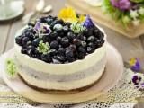 Cheesecake ai mirtilli senza forno ricetta