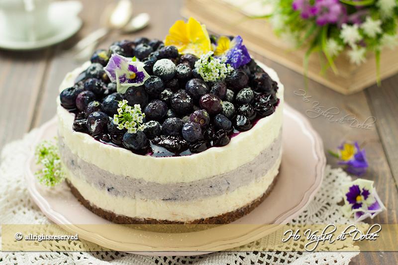 Cheesecake ai mirtilli senza cottura ricetta