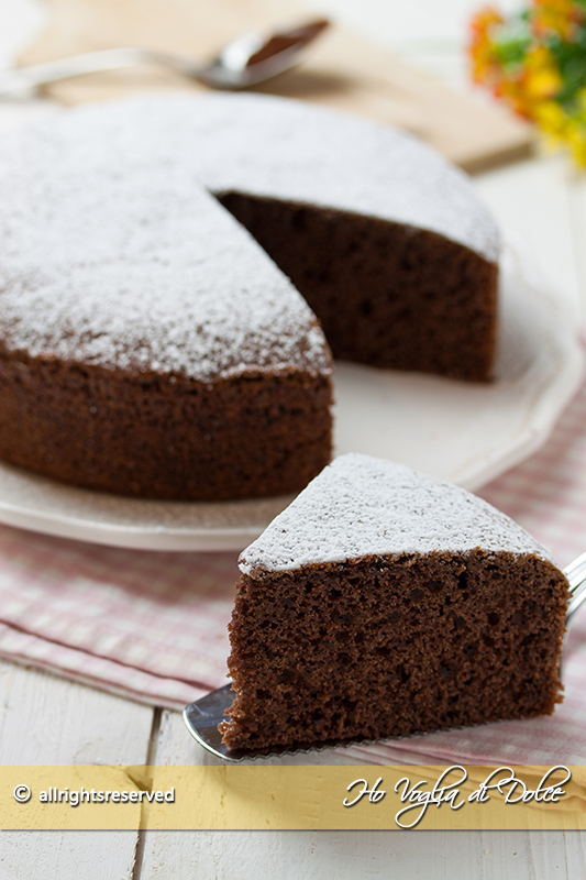 torta-12-cucchiai-al-cacao-ricetta-facilissima-senza-bilancia