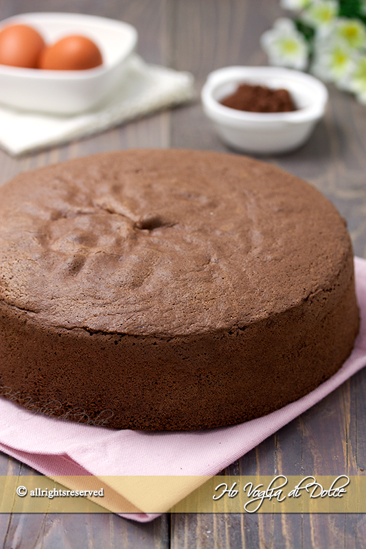 pan-di-spagna-al-cacao-altissimo-ricetta-infallibile
