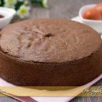 Pan di spagna al cacao ricetta infallibile | Ho Voglia di Dolce